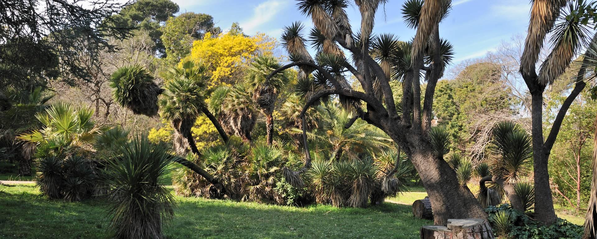Thuret Botanical Gardens ©Mairie d'Antibes