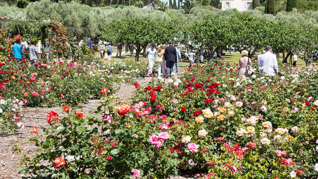 Jardins Villa Eilenroc ©Mairie d'Antibes Juan-les-Pins, service communication - Jacques Bayle