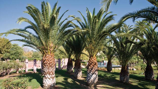 Parc Exflora - Juan © F. Trotobas (Mairie d'Antibes JLP - service presse communication)