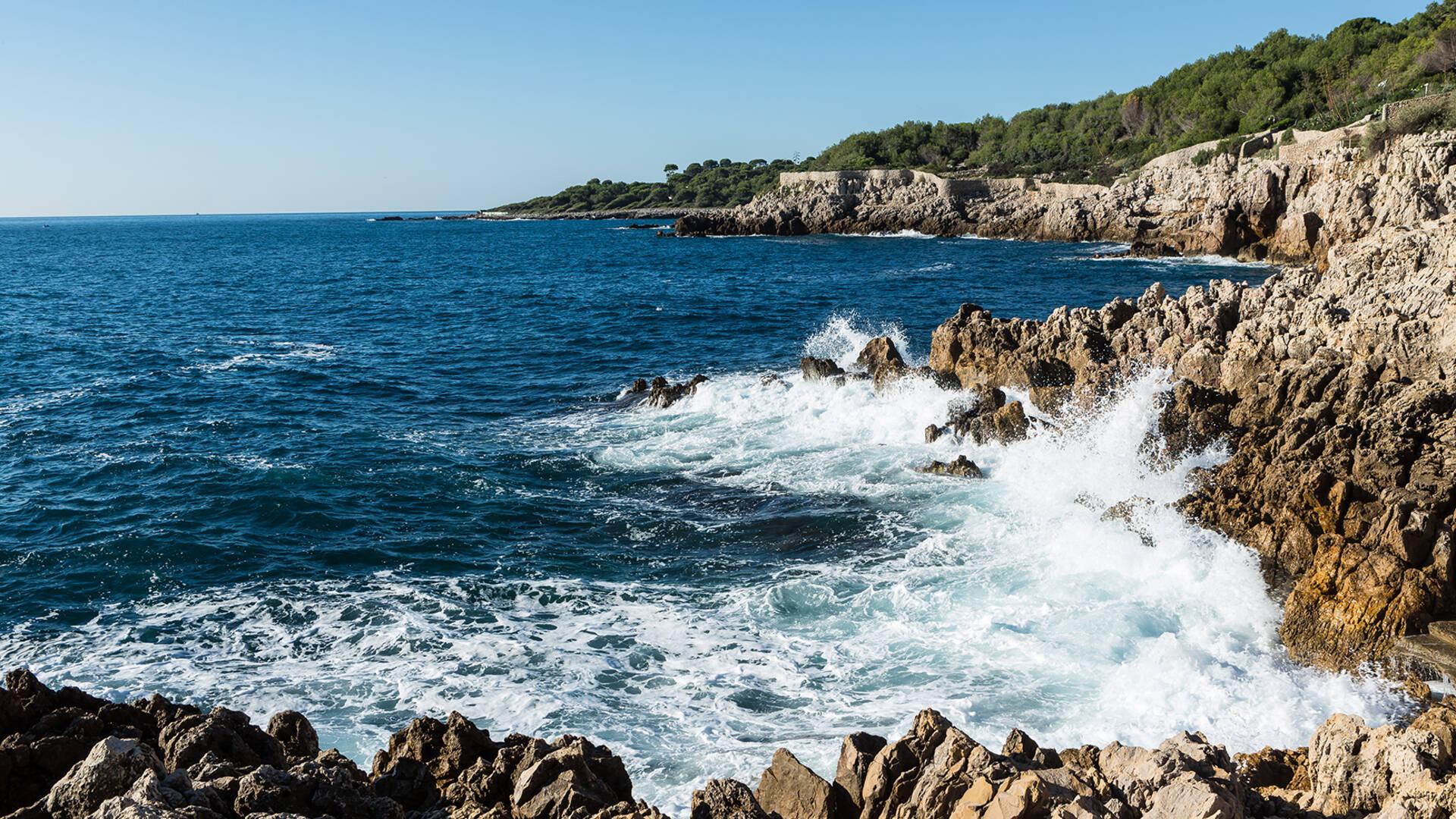 Wave ©Mairie d'Antibes - J. Bayle