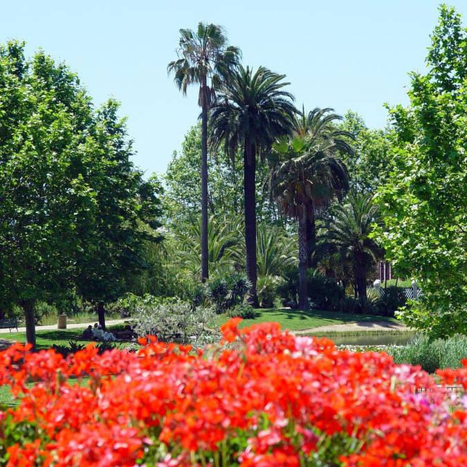 Parc Exflora, massif de fleurs ©F. Trotobas