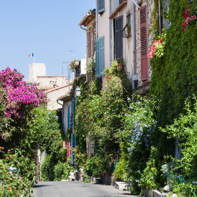 Strada du Haut Castelet ©J. Bayle
